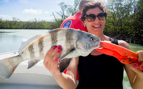Marco Island Backwater Fishing Charters | Florida Adventures and Rentals