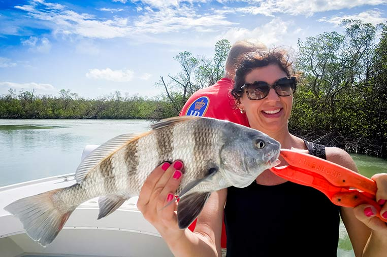 Marco Island Backwater Fishing Charter | Florida Adventures and Rentals