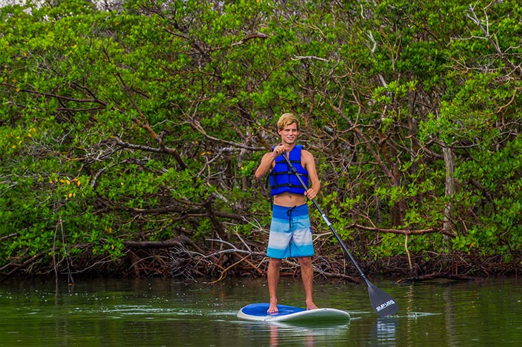 Explore the Mangroves with Marco Island Paddleboard Rentals | Florida Adventures and Rentals