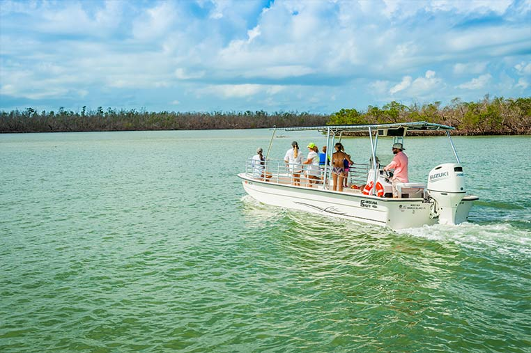 Marco Island Dolphin Tours by boat | Florida Adventures and Rentals