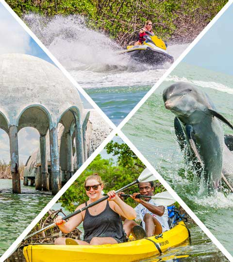Florida Adventures and Rentals | Marco Island Water Attractions