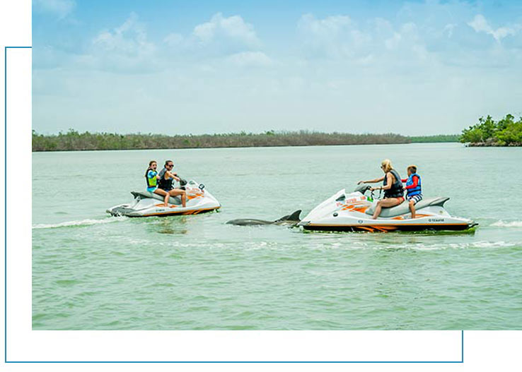 Guaranteed Dolphins On Your Jet Ski Tours | Florida Adventures and Rentals