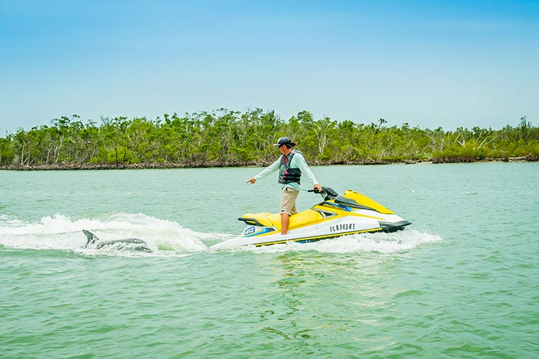 Guide pointing out dolphin on Marco Island Jet Ski Tour | Florida Adventures and Rentals