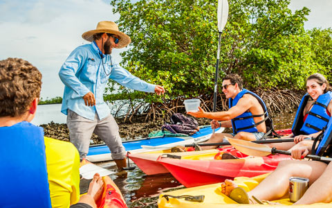 Kayak Tours and Rentals of Marco Island | Florida Adventures and Rentals