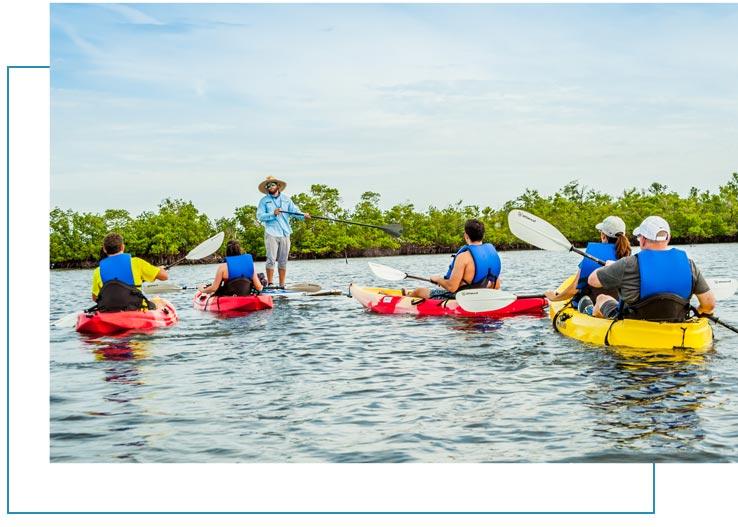 Kayak Tours Marco Island | Florida Adventures and Rentals