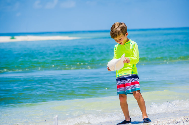 Large shells found on Marco Island | Florida Adventures and Rentals